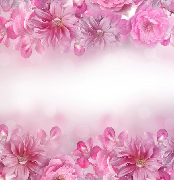 Rosa y púrpura orquídea, rosa, dalia flor marco de fondo Foto Premium