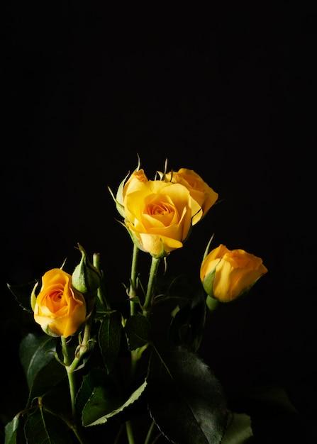 Rosas amarillas de alto ángulo Foto gratis