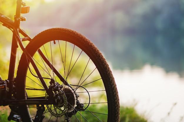 Rueda trasera de una bicicleta de montaña en el fondo del río en verano al atardecer Foto Premium