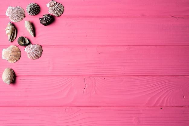 Fondos De Pantalla Rosa Rosa Flores Fondo De Madera: Seashells Sobre Fondo De Madera De Color Rosa
