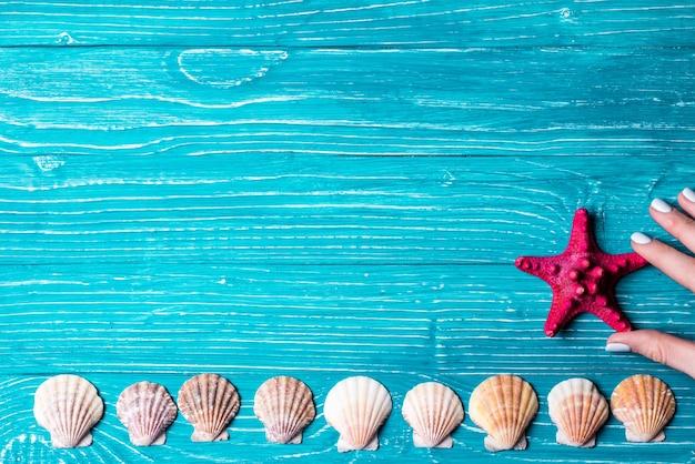 Seashells Y Estrellas De Mar De Color Rojo Sobre Fondo De