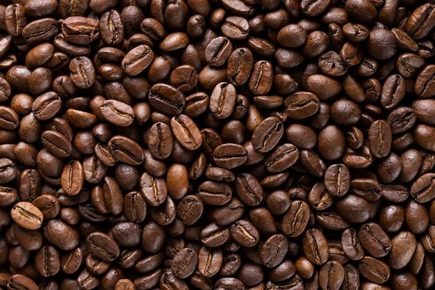 Selección de primer plano de granos de café orgánicos. Foto gratis