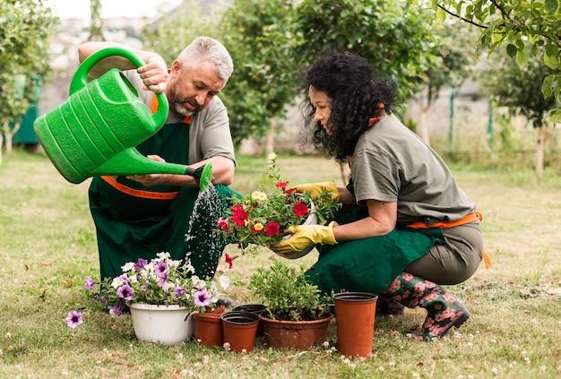 Senior pareja cuidando las flores Foto gratis
