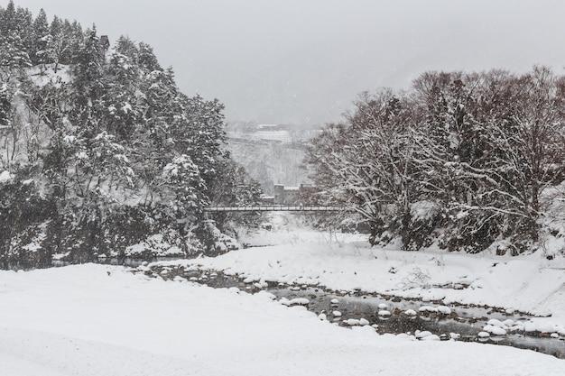 Shirakawago pueblo y puente de cuerda con nieve caída en temporada de invierno Foto Premium