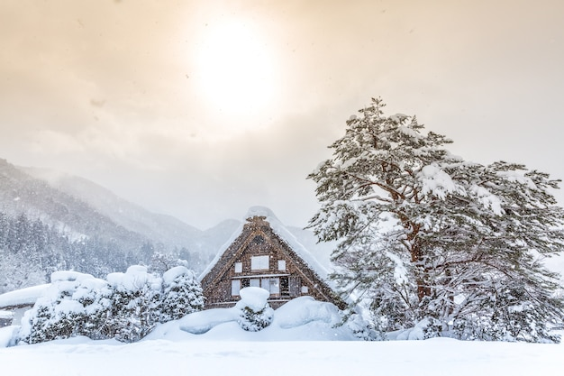Shirakawago con sol nieve Foto Premium