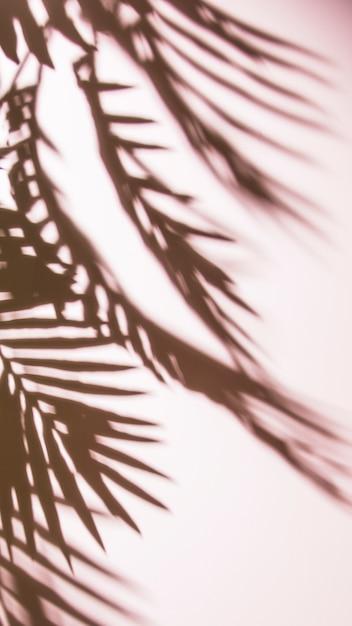 Sombra oscura de telón de fondo de color Foto gratis