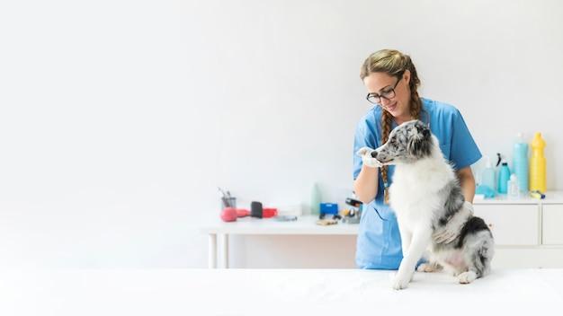 Sonriente mujer veterinario tocando la boca del perro en la clínica Foto gratis