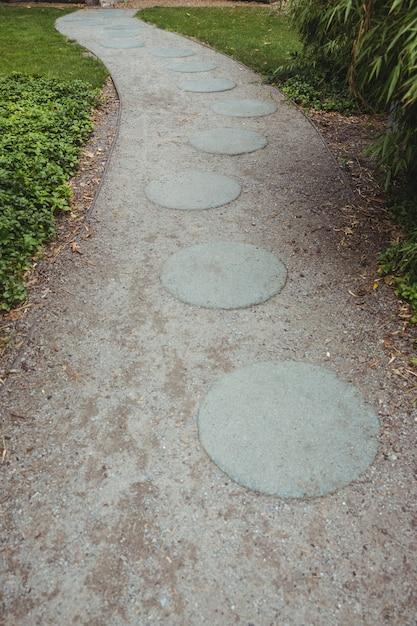 Stepping camino del jard n de piedra descargar fotos gratis for Camino de piedra en el jardin