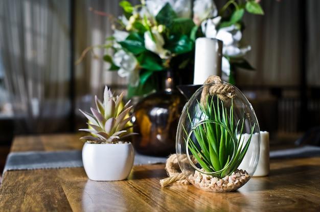 Suculenta en una olla de vidrio, planta de cactus. diseño, interiorismo, minimalismo. vista lateral Foto Premium