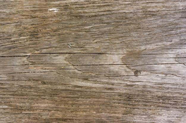 Superficie de madera marrón: ideal para un fondo fresco Foto gratis