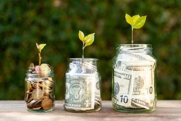 Tarros llenos de dinero y plantas encima de ellos Foto gratis