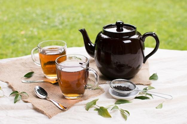 Tazas de té de cristal herbario con la tetera negra hierbas en mantel contra la hierba verde Foto gratis