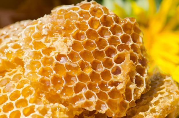 Tazón con panales frescos y miel. ingredientes naturales orgánicos Foto Premium