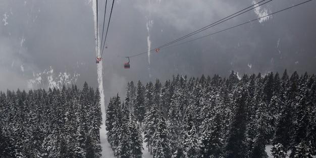 Teleféricos de arriba sobre el bosque en la montaña, whistler ...