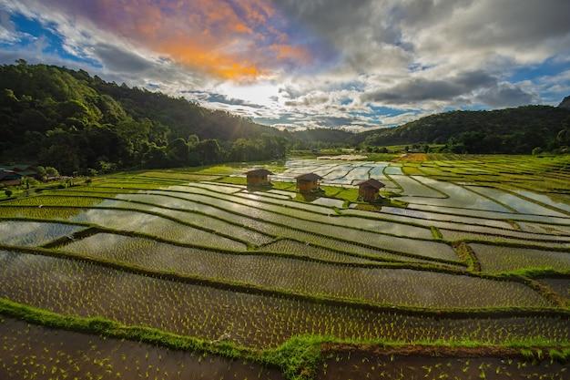 Terraza del arroz de la estancia en casa de mae klang luang en el norte de tailandia en el tiempo chiang mai tailandia. campos de arroz chom thong district. Foto Premium