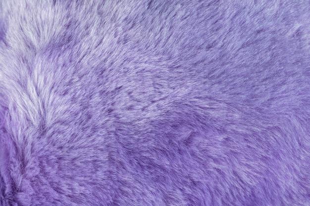 púrpura fotos piel