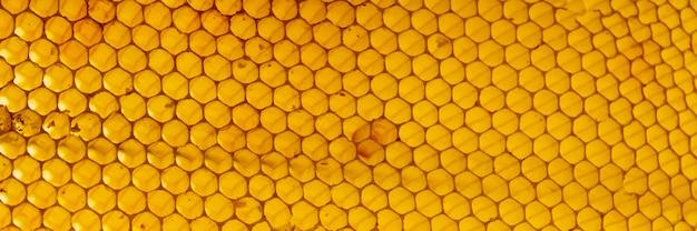 Textura de panal amarillo Foto gratis
