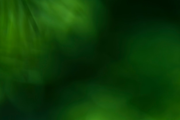 Textura de plantas borrosas de cerca Foto gratis