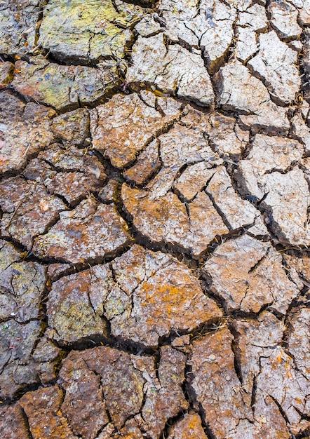 Tierra arcillosa agrietada | Descargar Fotos gratis