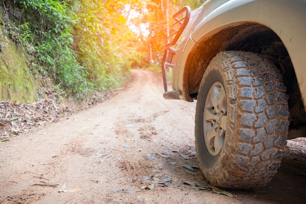 Tire en forma de campo de verano. al aire libre, aventuras, expedición, explorar y viajar. Foto Premium