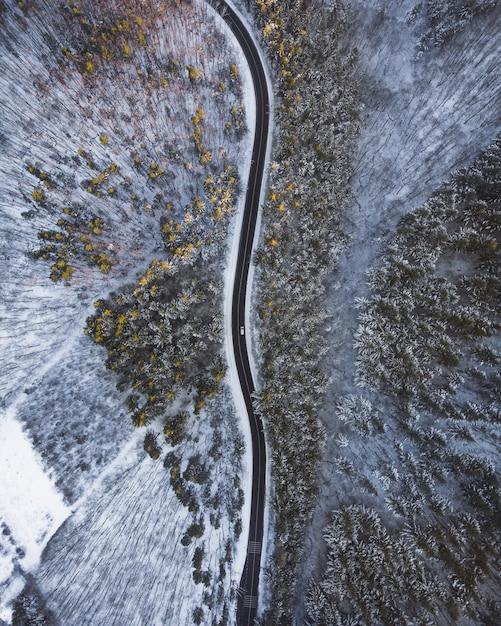 Toma aérea de arriba hacia abajo de un largo camino en medio de árboles y nieve Foto gratis