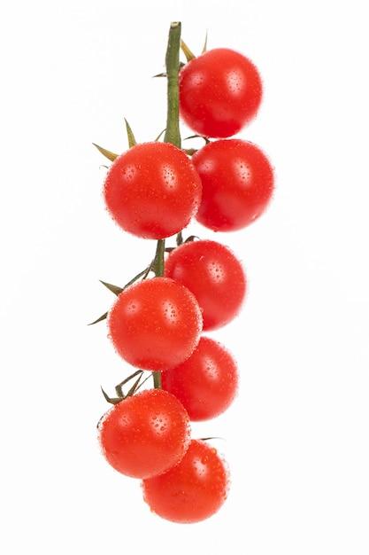 Tomates cherry frescos en una rama Foto gratis