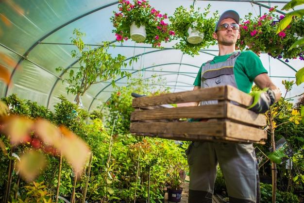 Trabajo de invernadero de jardinero Foto gratis