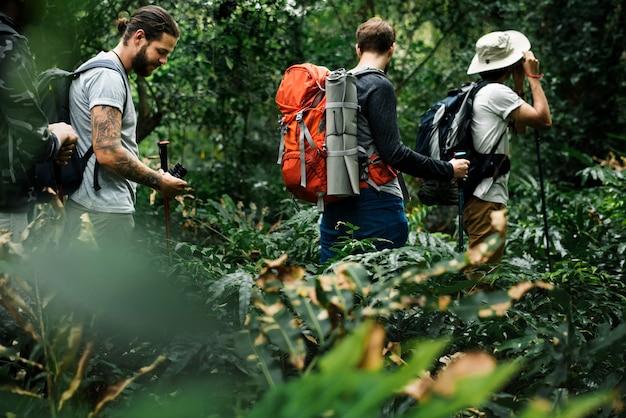 Trekking en un bosque Foto gratis