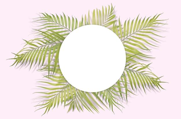 Tropical hojas de palma con papel blanco sobre fondo de color rosa ...