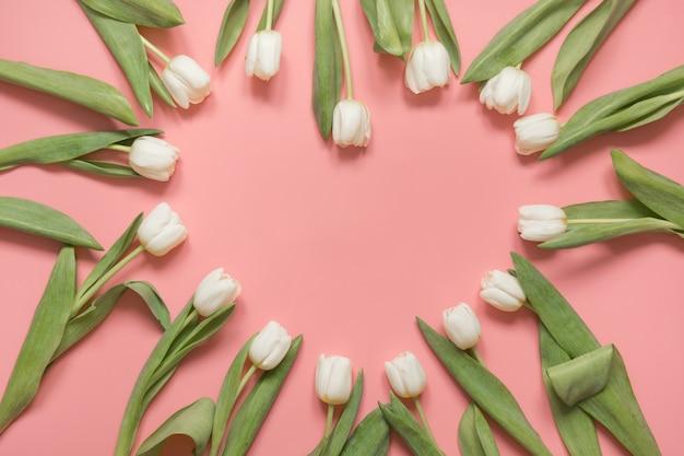 Tulipán blanco dispuesto en forma de corazón en rosa milenario. vista superior. Foto Premium