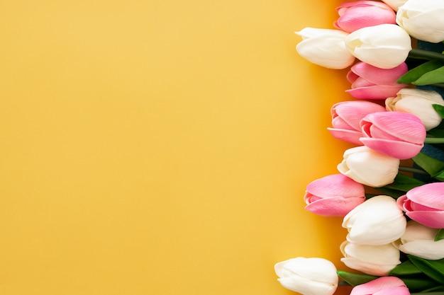 Tulipanes rosados y blancos sobre fondo amarillo Foto gratis