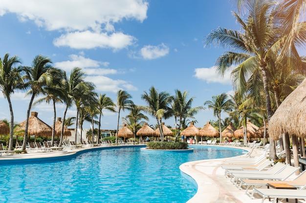 Tumbonas cerca de palmeras y piscina. Foto gratis