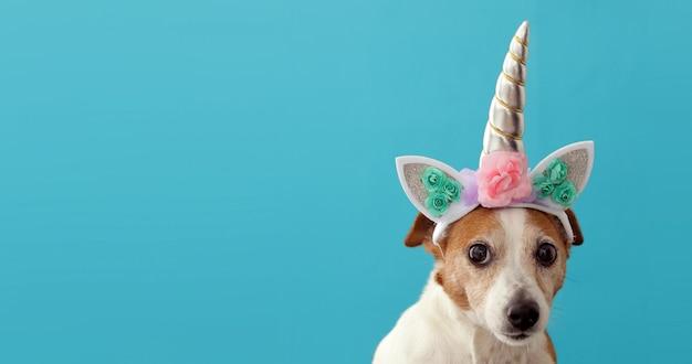 Unicornio divertido pequeño perro blanco en azul Foto Premium