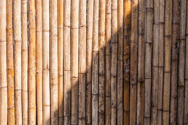 Valla de bambú Foto Premium