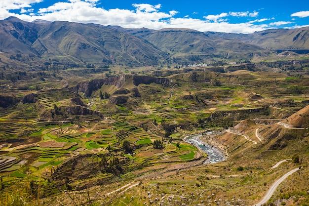 Valle del colca, perú Foto Premium