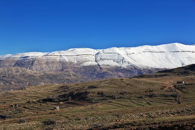 Valle de kadisha en las montañas del líbano Foto Premium