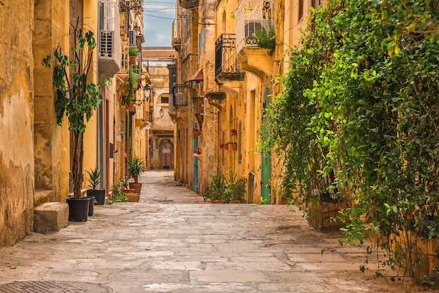 Valletta, malta. antigua calle medieval vacía con edificios amarillos y macetas Foto Premium