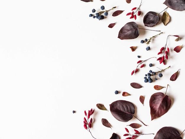 Varias bayas y hojas de árboles silvestres frontera aislado en blanco Foto Premium