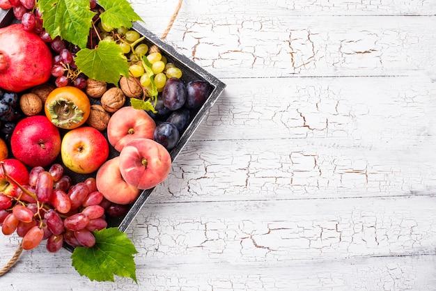 Varias frutas de otoño Foto Premium