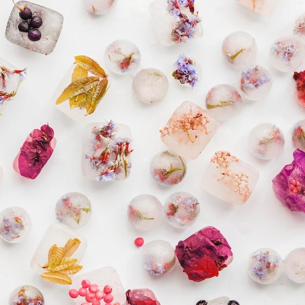 Varias plantas y bayas en bloques de hielo y bolas. Foto gratis