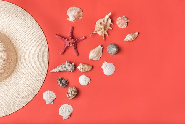 Variedad de conchas y parte de sombrero de paja. Foto Premium