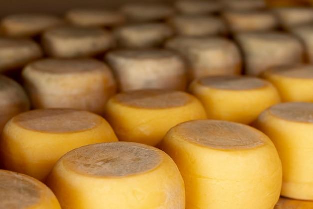 Variedad de ruedas de queso rústico. Foto gratis