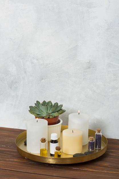 Vela encendida planta de cactus; semilla de mostaza; la piedra y aceite esencial en placa de cobre sobre el escritorio de madera. Foto gratis