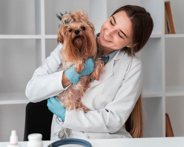 Veterinario que controla la salud del cachorro Foto gratis