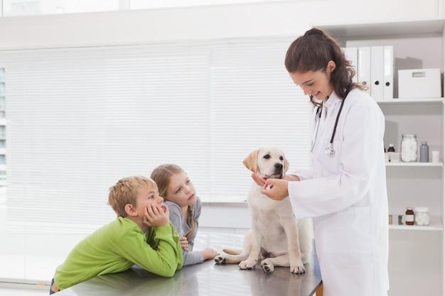 Veterinario sonriente que examina un perro con sus dueños