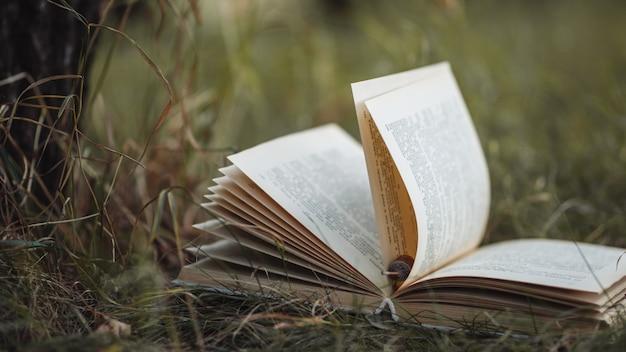 Viejo libro se encuentra en la hierba en el parque Foto Premium