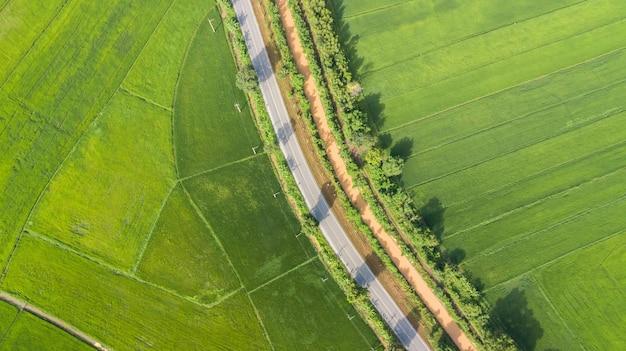 Vista aérea de campos de arroz verde con carretera en tailandia Foto Premium
