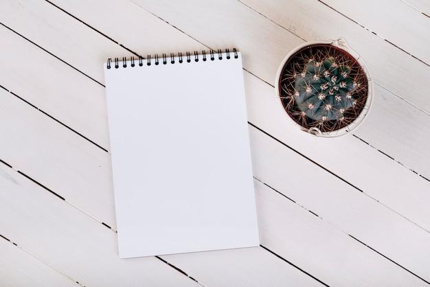 Vista aérea de una planta suculenta espinosa cerca de la libreta espiral en blanco blanco sobre superficie de madera Foto gratis