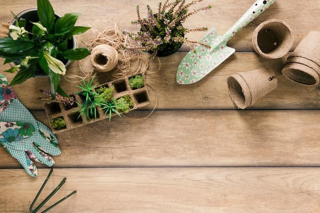 Vista aérea de plantas en bandeja de turba; guante; showel maceta de turba planta floreciendo; rastrillo y cuerda en mesa marrón Foto gratis
