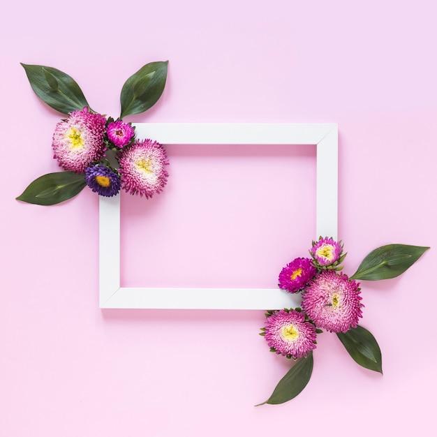 Vista elevada del marco decorado con flores sobre fondo rosa Foto gratis